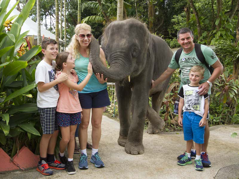 Half-Day Phuket Animal Tour from Khao Lak - Private Transfer