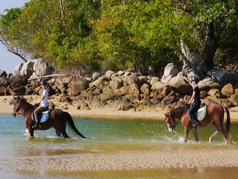 2-Hour Horse Riding in Jungles and Beaches from Phuket - Private Tour